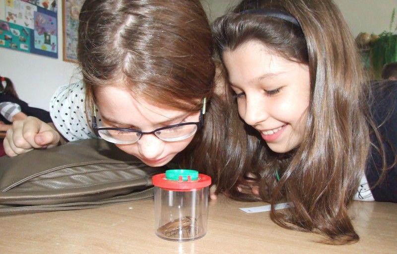 Studenckie Koło Naukowe Biologów