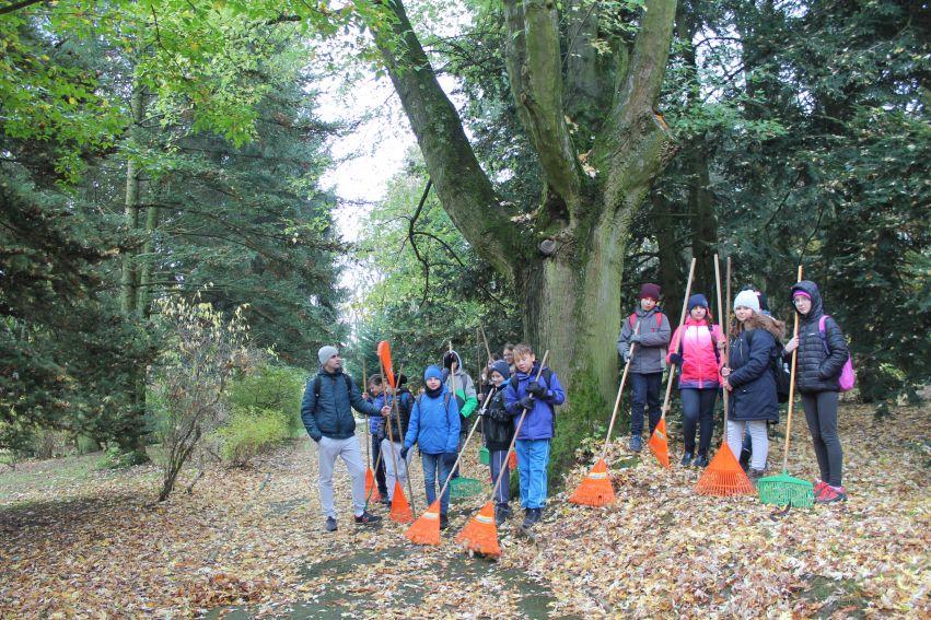 25 października: Sadzenie drzewa