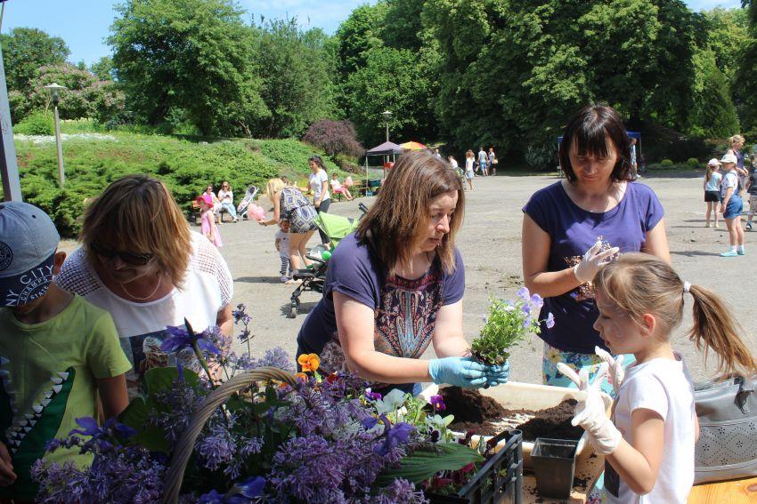 13 maja: Majówka z Botanikiem