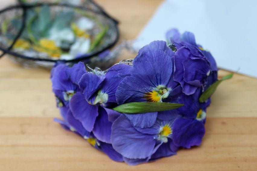 15 maja: Dzień Polskiej Niezapominajki