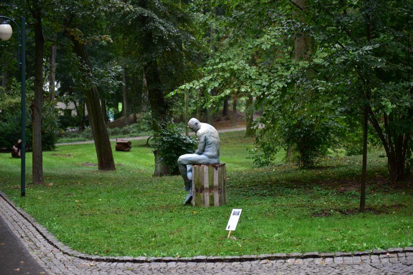 Zmysły Ogrody Saskiego