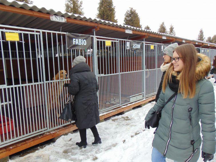 Wizyta Koła Rusycystów w Lubelskim Schronisku dla...
