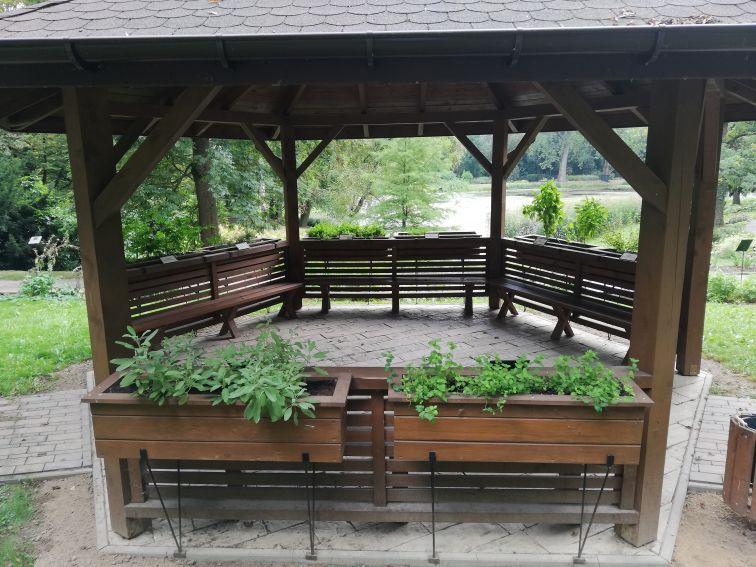 Ścieżka zmysłów w Ogrodzie Botanicznym UMCS