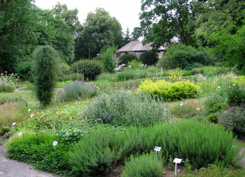 Ogród Botaniczny - Dział Roślin Południowej i...