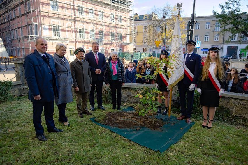 Święto Drzewa 2021