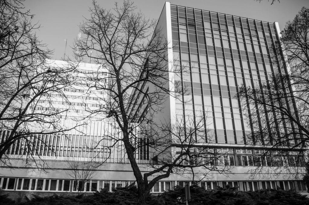 Wydział Prawa i Administracji (6).JPG