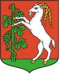Patronat Prezydenta Miasta Lublin