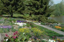 Dział Roślin Ozdobnych -