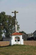 7945-kazimierz-umcs-201610.jpg