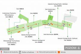 Mapa_Wydziału_2.jpg
