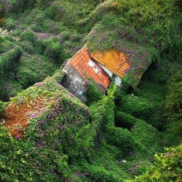 Rozstrzygnięcie Konkursu Fotografii o Portugalii