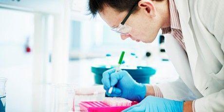 Nowe konkursy na badania naukowe