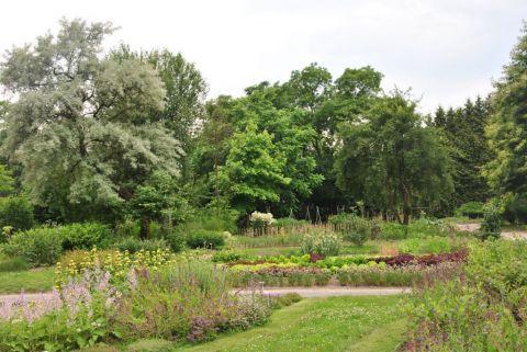 Międzypokoleniowe warsztaty florystyczne w Ogrodzie...