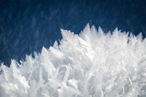 Zimowisko dla dzieci pracowników