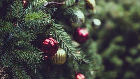 Рождественские и Новогодние поздравления от ректора УМКС
