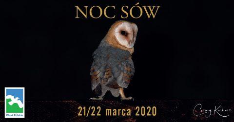 Uwaga! Noc Sów 2020