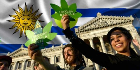 Interview: War on drugs and drug cartels: dilemmas...