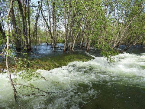 Komentarz eksperta nt. powodzi