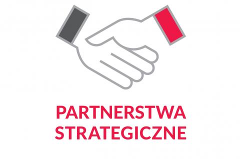 Partnerstwa Strategiczne NAWA - nabór wniosków