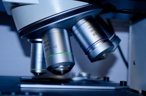 Nabór doktorantów do projektu w Zakładzie Biofizyki
