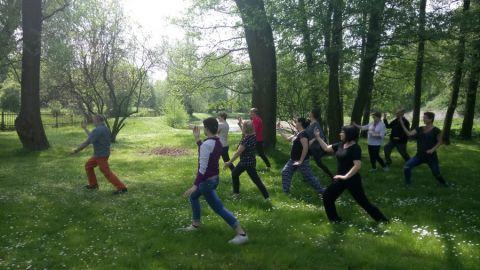 Grupa ćwicząca Tai Chi pośród drzew