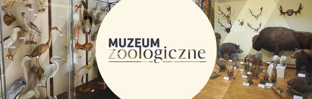 Muzeum Zoologiczne