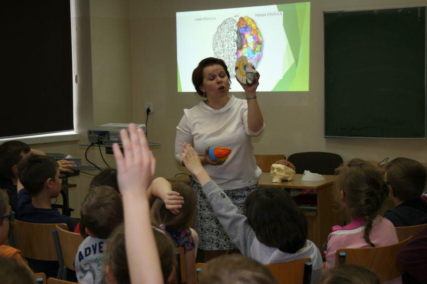 Mój tajemniczy mózg – bajkowa podróż dla dzieci z...