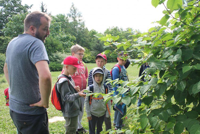 3-7 lipca: Letnia Akademia Małego Przyrodnika