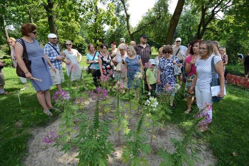 Uzbrojenie roślin - niedzielny spacer z przewodnikiem